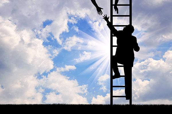 Climbing Work Ladder