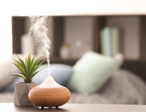 Making Your Workspace a Zen Home